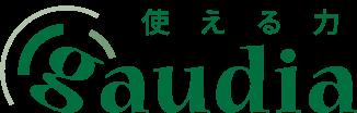 株式会社ガウディア